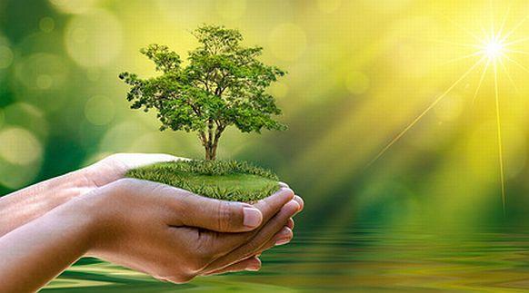 Klima schützen - ©sarayut_sy/fotolia